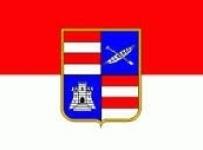 Financiranje projekata udruga iz područja skrbi o hrvatskim braniteljima iz Domovinskog rata i projekata udruga proisteklih iz 2. svjetskog rata