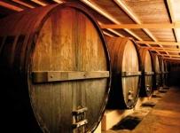 Ulaganje u vinarije i marketing vina