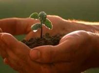 Odobren program potpora u poljoprivredi i ruralnom razvoju
