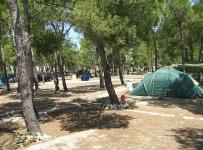 Javni poziv - kampovi, marine, tematski parkovi