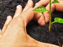 Financiranje projekata ili programa udruga iz područja zaštite okoliša i prirode za 2017. godinu