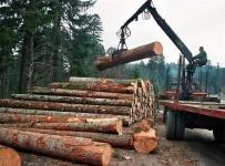 "Natječaj  8.6.2. ""Modernizacija tehnologija, strojeva, alata i opreme u predindustrijskoj preradi drva"""